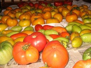Как хранить помидоры