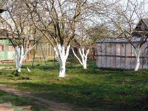 Садовые работы в апреле