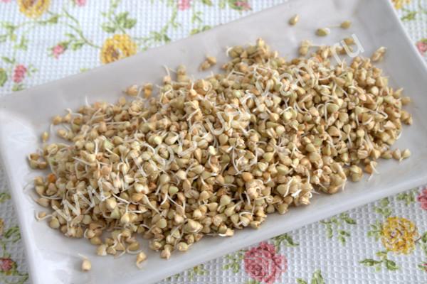 Пророщенные зерна зеленой гречки